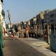 Venezia, bagno nudo nel Canal Grande, turisti senza maglietta a San Marco 6