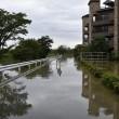 Giappone, si rifugiano su tetti: alluvione porta via case3