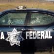 Narcos messicani, FOTO web: pistole dorate, Ak 47, soldi19