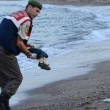 Aylan Kurdi, foto commuove mondo. Ma c'è chi crede sia falsa 01