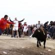 Toro de la Vega ucciso: Spagna, scontri con animalisti6
