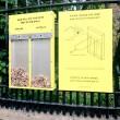 Votare con mozziconi l'idea per tenere pulita Londra FOTO3