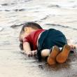 Immigrazione. Aylan, bimbo curdo annegato: omaggio artisti