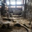 Quirinale, scoperta casa dei Re Tarquini: ha 2600 anni FOTO 9