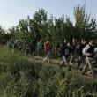 Ungheria, scontri migranti-polizia. Croazia nuova rotta6