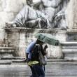 Maltempo a Roma, alberi caduti e allagamenti a Eur e Prati