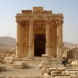 Palmira (Reuters)