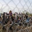 ngheria arresta 9mila migranti. Muro Orban sigilla confine3