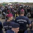Ungheria, migranti sfondano confine. Muro non finito, via il ministro 2