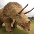 Giappone, giganti sculture di paglia nei campi FOTO 2