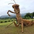 Giappone, giganti sculture di paglia nei campi FOTO 4