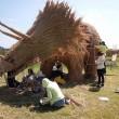 Giappone, giganti sculture di paglia nei campi FOTO 6