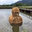 Giappone, giganti sculture di paglia nei campi FOTO 7