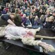 Leone ucciso e vivisezionato davanti a bimbi Danimarca FOTO 1