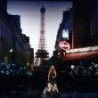 Celine Dion canta Edith Piaf: omaggio a vittime Parigi4