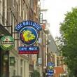 Viaggio Amsterdam: 15 cose imperdibili da vedere e fare3