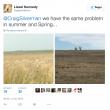 La sfida di Liezel Kennedy: trovate le pecore in questa FOTO