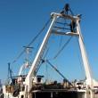 Pescatore Matteo Colella minaccia suicidio da torre barca FOTO 3