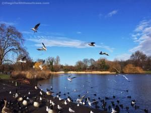 regent's park- capodanno a Londra