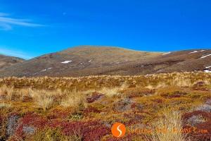 Trekking nella terra di Mordor: Cserjes resz