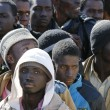 Migranti, zoo e parco giochi gratis per i richiedenti asilo