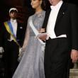 Nobel, cena di gala a Stoccolma: le principesse incantano8