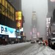 Tempesta Jonas sugli Usa: New York ferma, morti salgono a 19 20