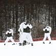 Marines e militari coreani sulla neve