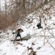 Marines e militari coreani sulla neve2