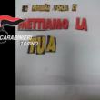 'Ndrangheta a Torino, testa di maiale a vittime: 20 arresti 3