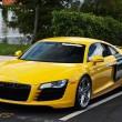 Audi gialla in fuga, terrore in Veneto: ha uomini armati6