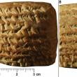 Babilonesi calcolavano posizione Giove e su tavolette...FOTO 3