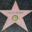 """David Bowie, dal glam rock alla """"Trilogia di Berlino21"""