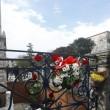 Attentato Istanbul, arrestata una donna legata ad Isis 7