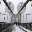 Tempesta Jonas sugli Usa: New York ferma, morti salgono a 19 3