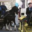 Dublino, funerale stole Casamonica del boss: fiori, carrozze e cavalli al rito funebre di David Byrne. 5