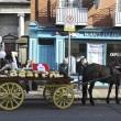 Dublino, funerale stole Casamonica del boss: fiori, carrozze e cavalli al rito funebre di David Byrne. 11