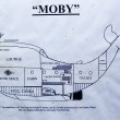 Moby, barca-balena 2