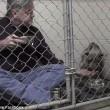Pitbull non mangia veterinario entra in gabbia6