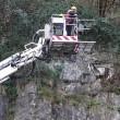 Pompieri salvano capra bloccata nella gola di montagna5