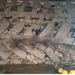 YOUTUBE Terremoto Taiwan: palazzi crollati, si temono morti 7