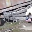 Video YouTube - Orso polare attacca donna 4