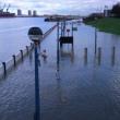 Londra, allerta inondazioni: Tamigi oltre gli argini FOTO