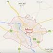 Isis, sedicenne svedese liberata dai curdi in Iraq 2