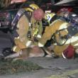 Cane soccorso dai pompieri con maschera ossigeno
