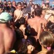 delfino2Delfino cucciolo muore per colpa turisti che vogliono selfie 3