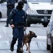 "Stragi Parigi, accusa: ""Polizia sparò su polizia e Diesel"" 02"