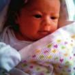 """Polizia salva bimba 18 mesi: """"Abbiamo udito voce di donna..""""04"""