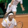 Tennis, Seppi nella foto Ansa