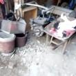 Canile lager con carcasse di cani in frigo VIDEO 4